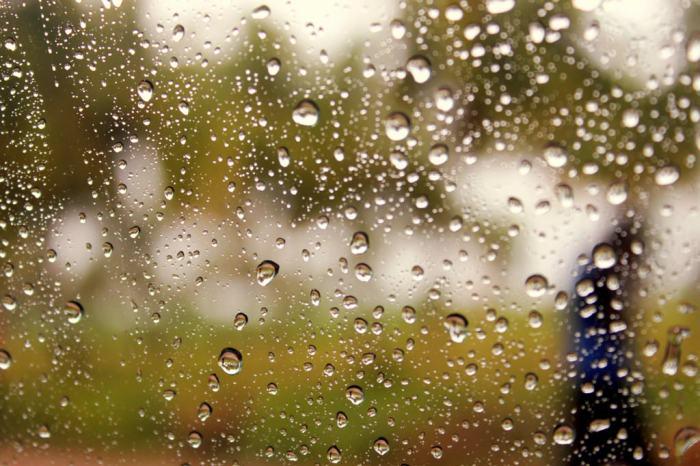 Oneyear-Rains
